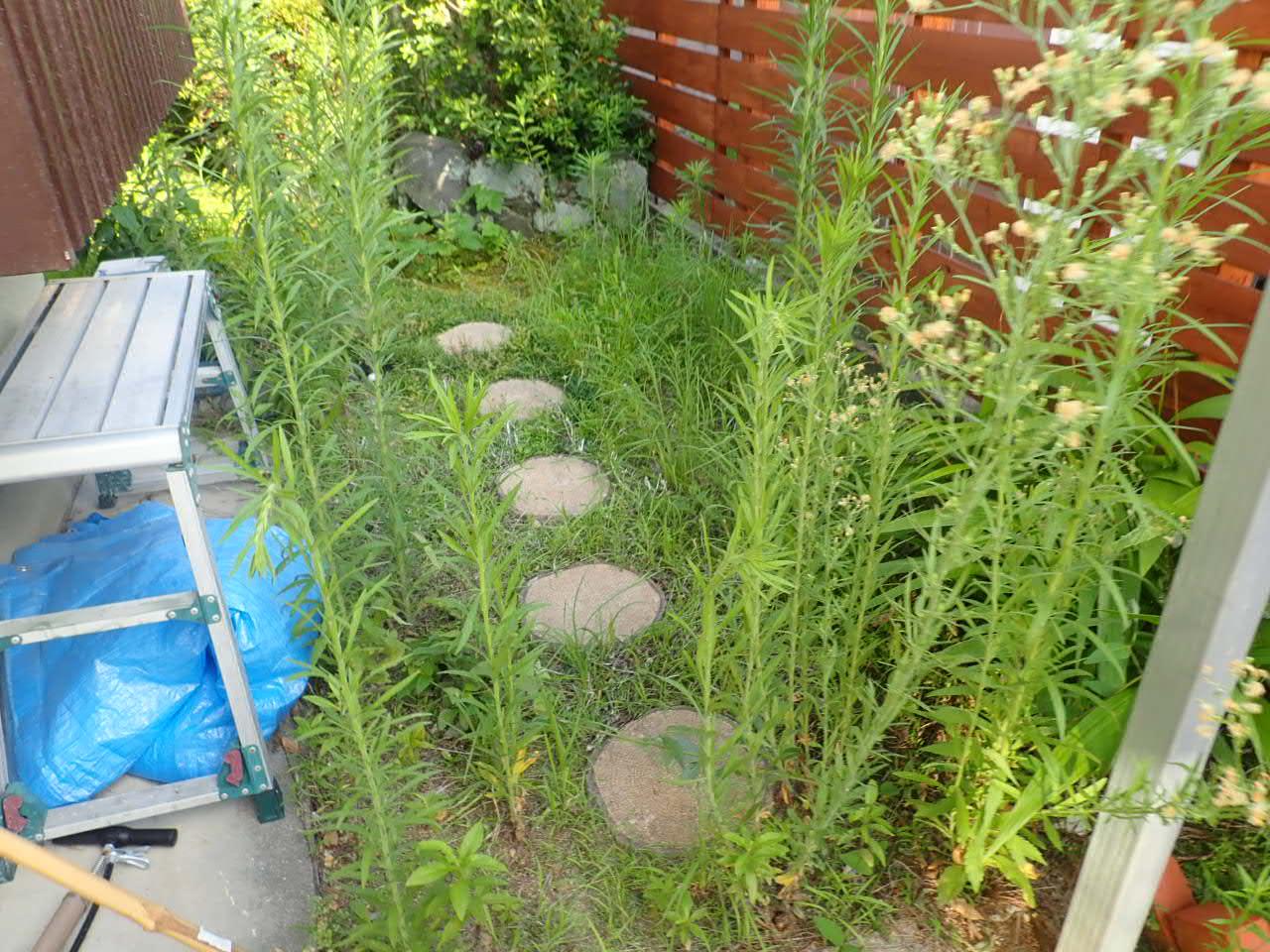 堺市南区 雑草と虫を気にせず遊べるお庭リフォームスタート