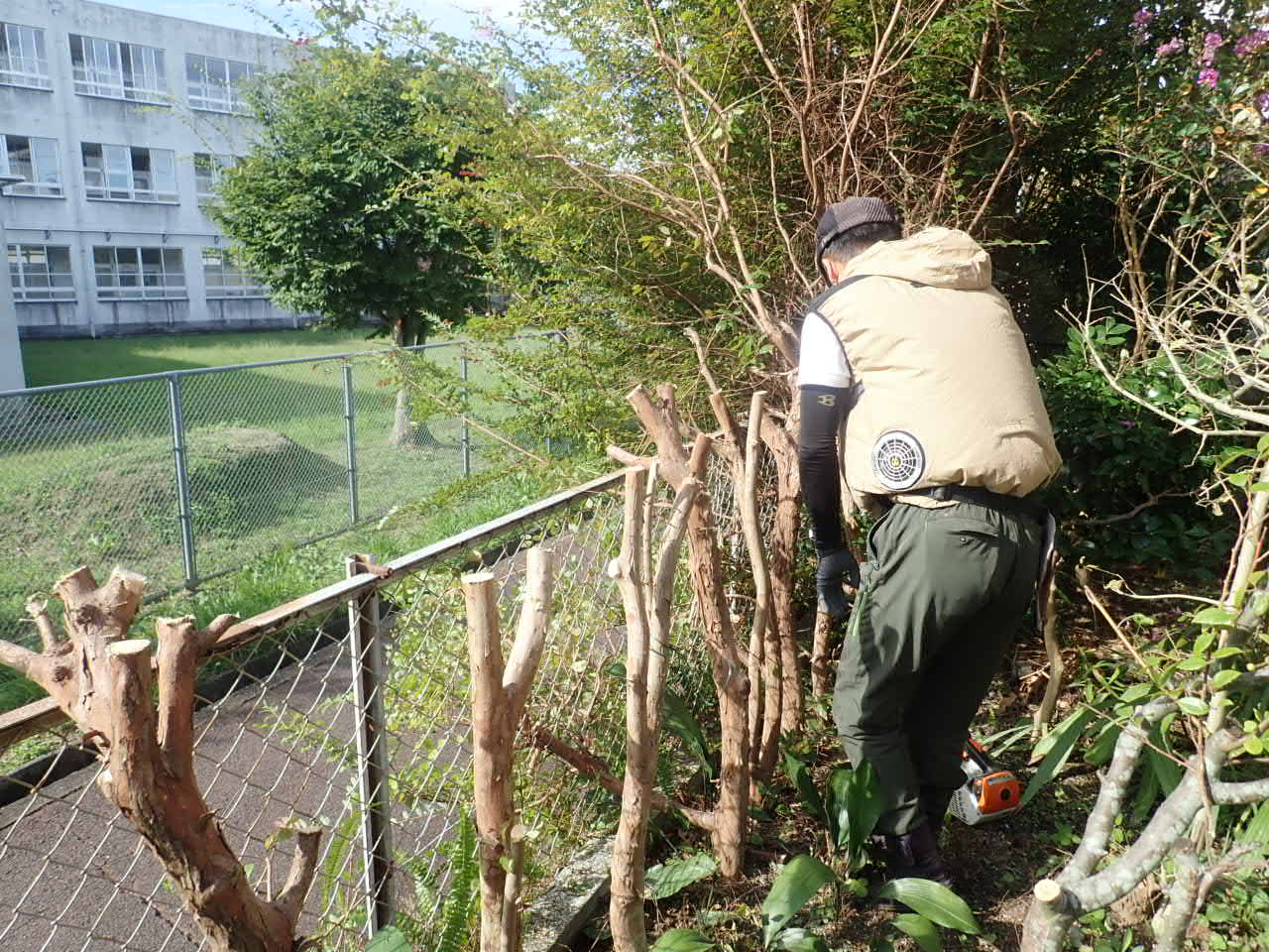堺市南区生垣の撤去と目隠しフェンスの設置工事スタート